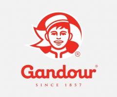 gandour logo