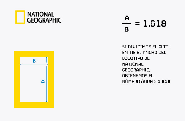 logotipo proporcion aurea national geographic simbolo de marca