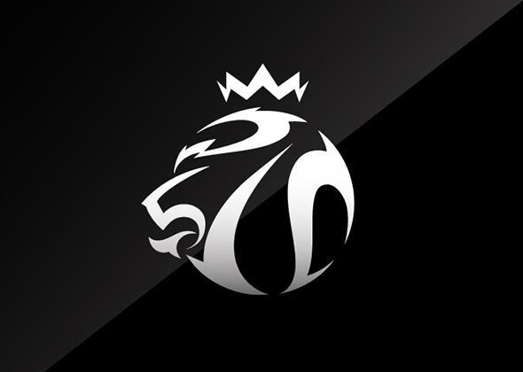 1 FF2013 Emblem 1