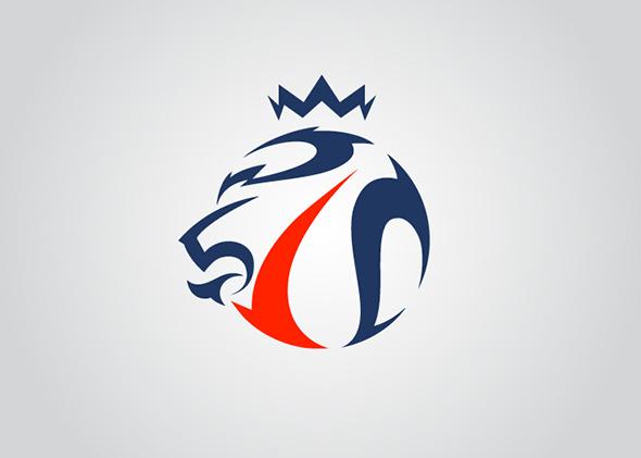 2 FF2013 Emblem 2