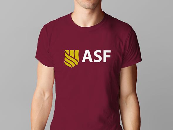 Camiseta*