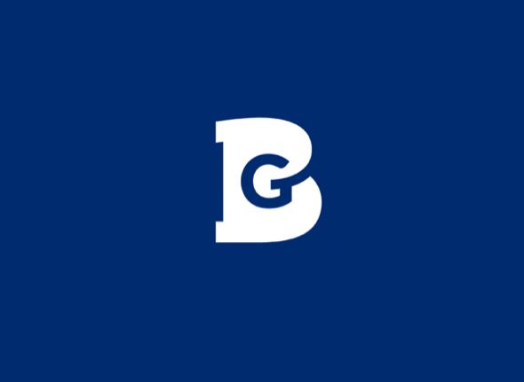 logo_blue_goose_1