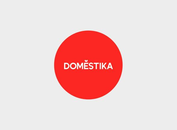 dmstk logo 2013