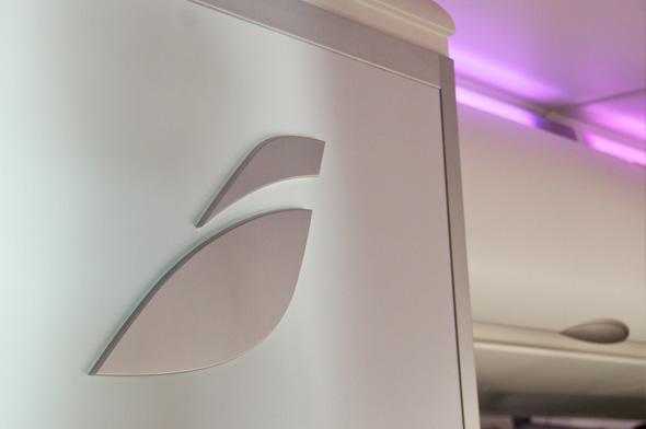 logotipo de iberia en aviones